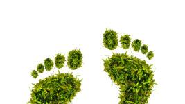 nachhaltige Investments